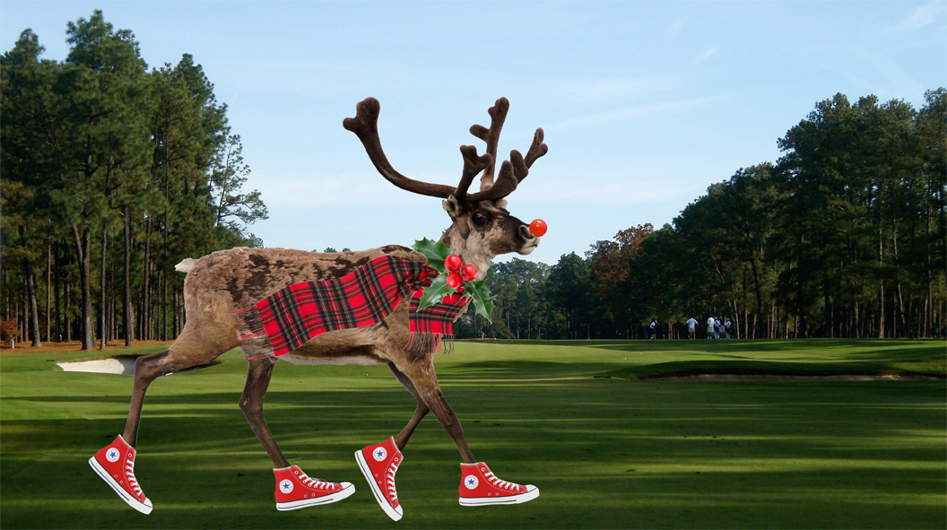 Our 2011 Reindeer made an appearance in Pinehurst.